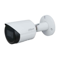 Camera IP Dahua IPC-HFW2431SP-S-S2 4.0 Megapixel